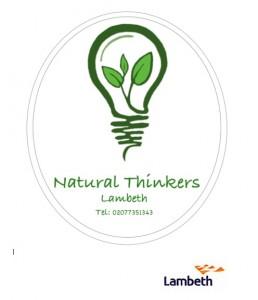 Natural Thinkers Logo