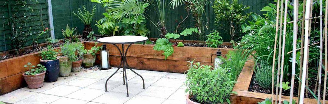 Transform your garden