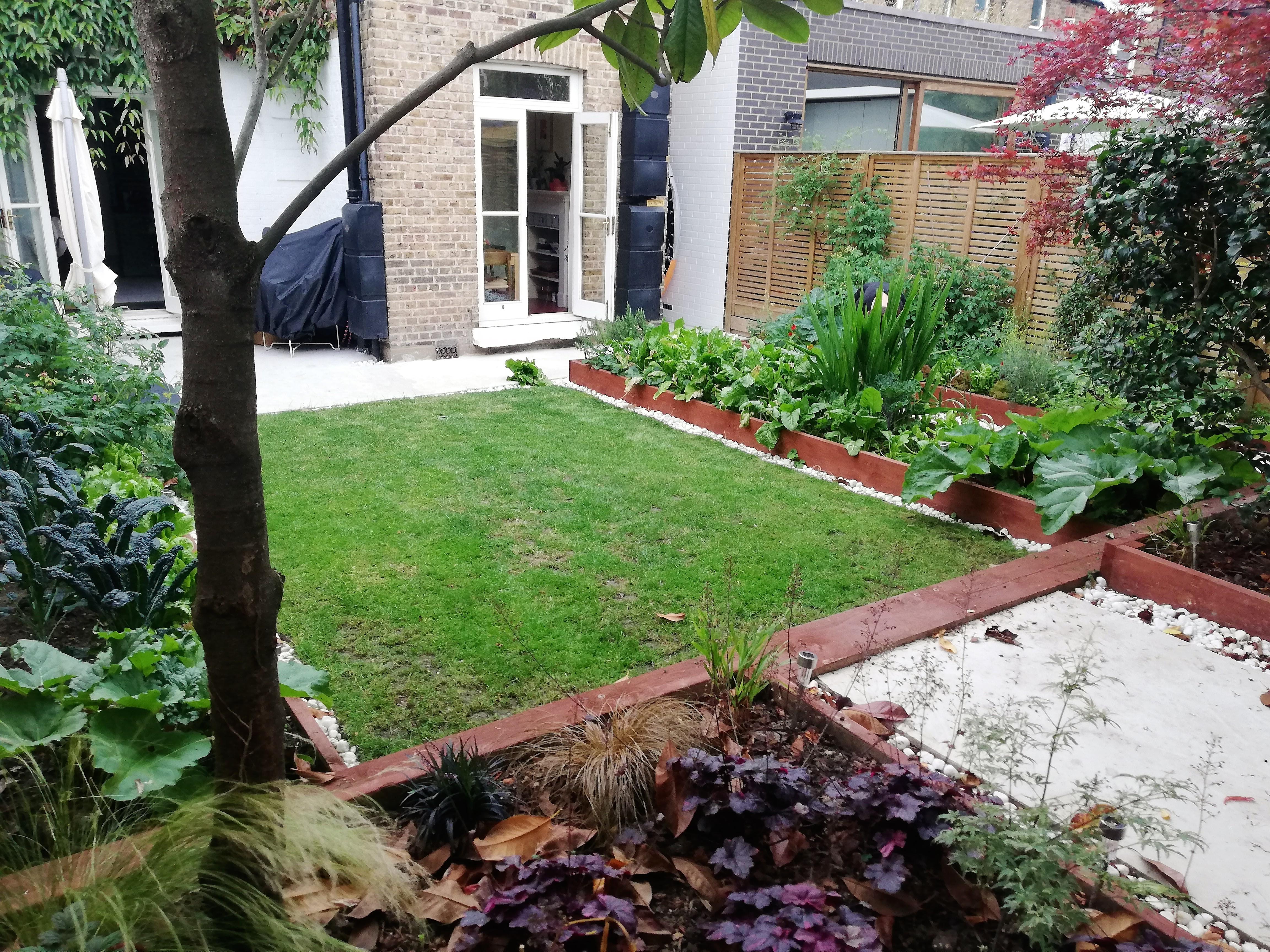 Solmons Seal garden design